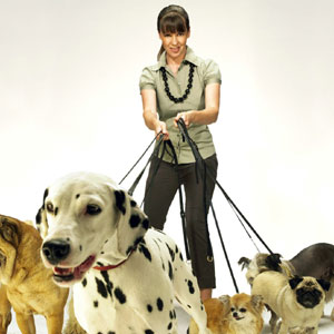 Victoria Stilwell from It's Me or the Dog and lots of dogs